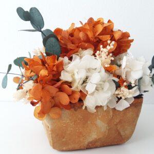 Flores preservadas y flores secas