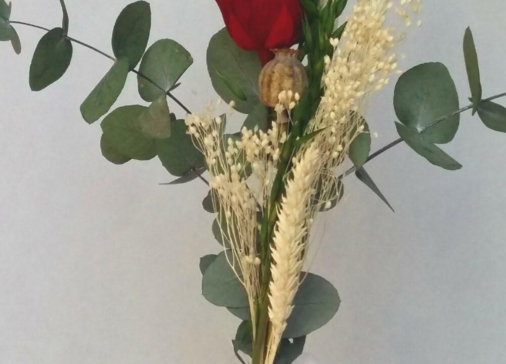 Rosa preservada per diada de Sant Jordi