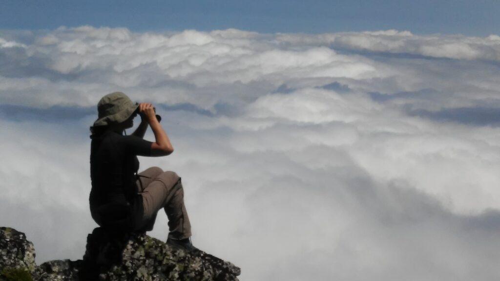 foto feta a 2.000 m d'alçada a la Cordillera Cantàbrica,