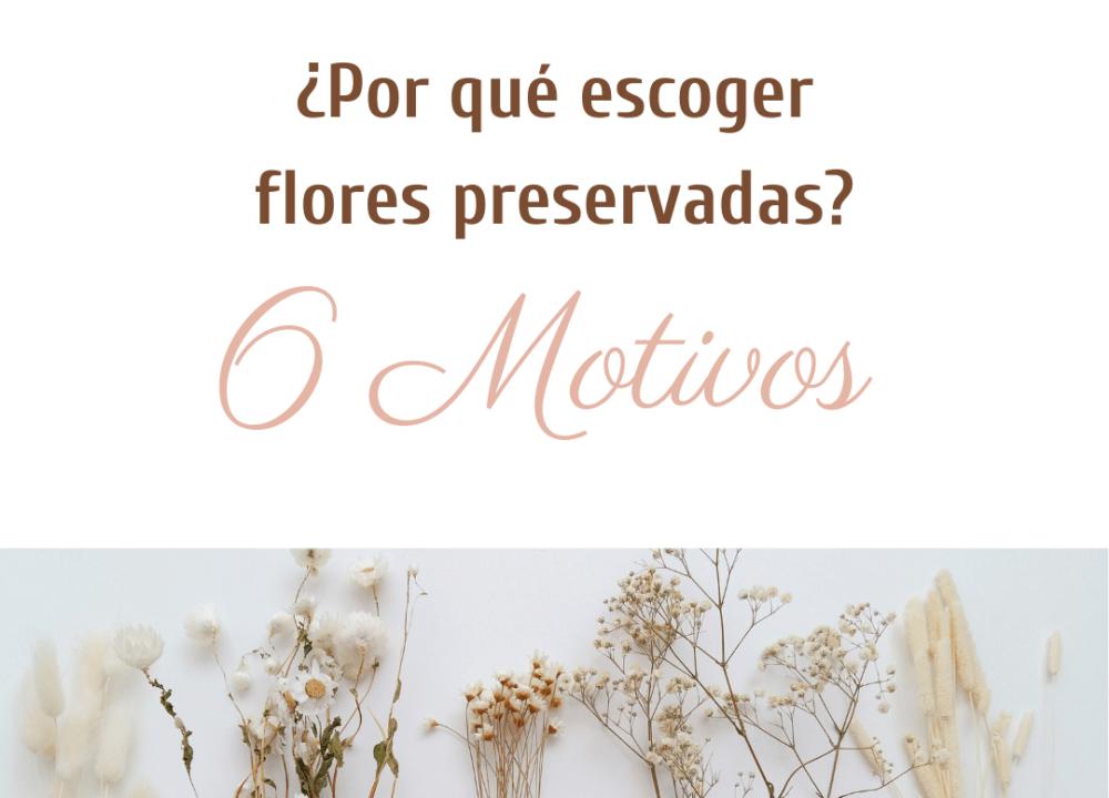 Que son las flores preservadas preservadas?: flores 100% naturales. No son de tela, tampoco de plástico. ¡Son totalmente naturales!